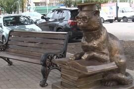 Под Сашиным дубом поселился кот ученый