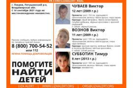 Что известно о пропавших мальчиках из Покрова