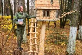 Орехово-зуевские лесничие призвали жителей округа подкармливать маленьких зверят и птиц зимой