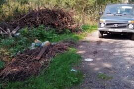 Лесничие вместе с жителями д. Асташково убрали свалку в лесу