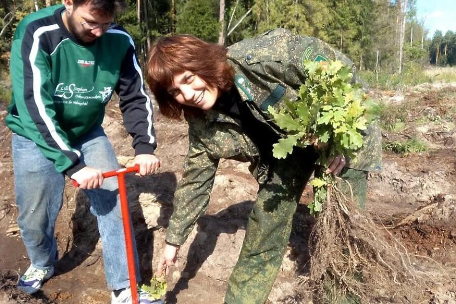 Акцию «Наш лес. Посади свое дерево» провели орехово-зуевские лесничие