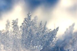 Первый снег в Орехово-Зуевском округе