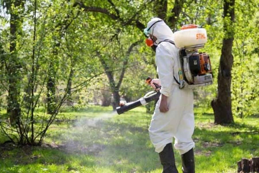 Обработка от клещей и комаров мест массового пользования