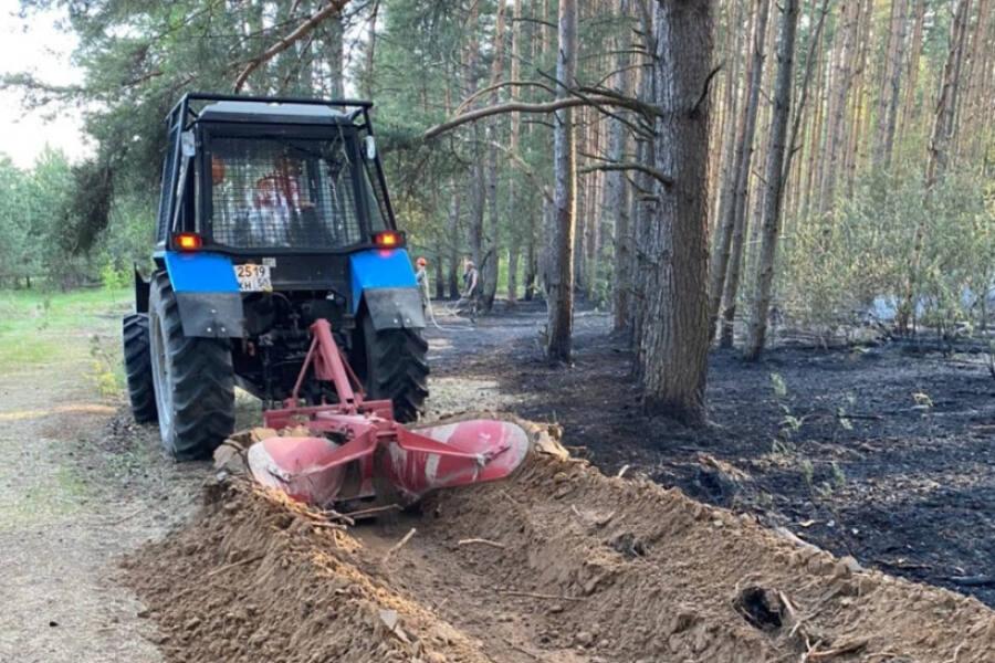 Как леса округа оберегают от пожаров
