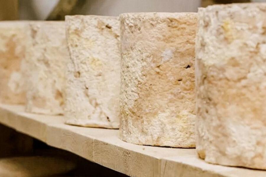 Сыроварня «Альдини» названа одним из лучших сырных предприятий в МО